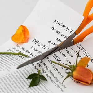 Young Family Law - blog